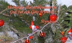 Julhälsning 2011